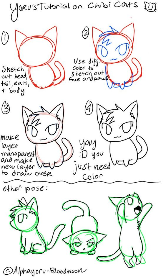 564x939 Chibi Drawing Refrences With Cat Ears And Tails By Kilin7