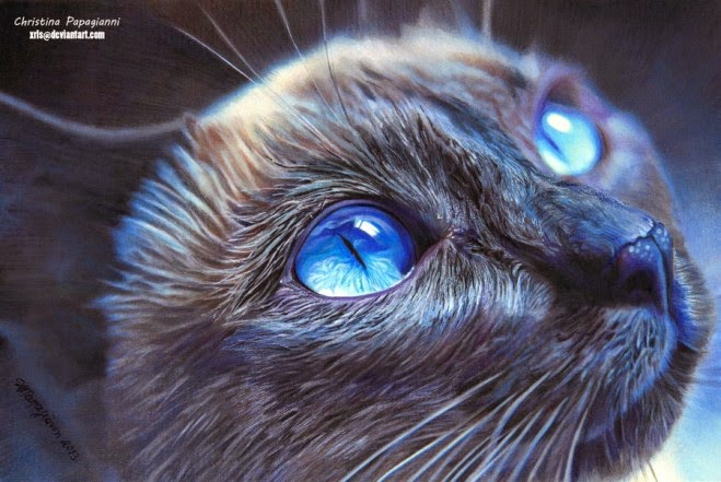 cat drawing realistic at getdrawings com free for personal use cat