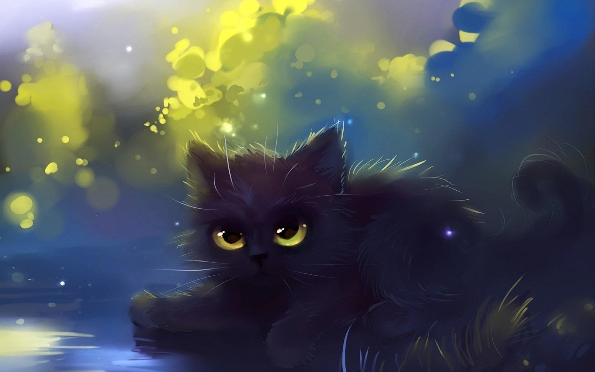 1920x1200 Fluffy Cat Imagem JPEG 1920 A 1200 Pixels