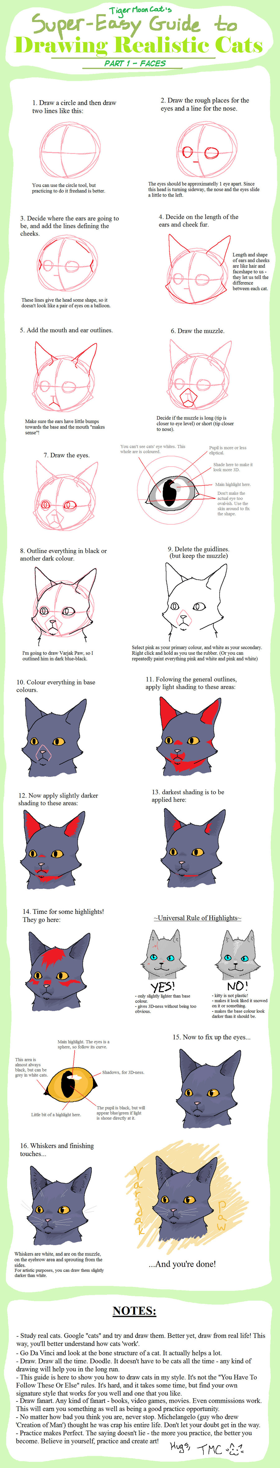 Cat Faces Drawing at GetDrawings.com | Free for personal use Cat ...