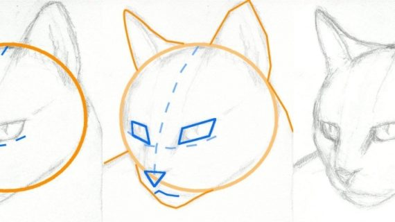Cat Head Drawing At Getdrawings Com Free For Personal Use Cat Head