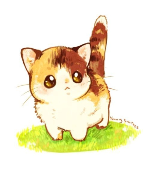 600x701 40 Simple Cat Drawing Examples Anyone Can Try