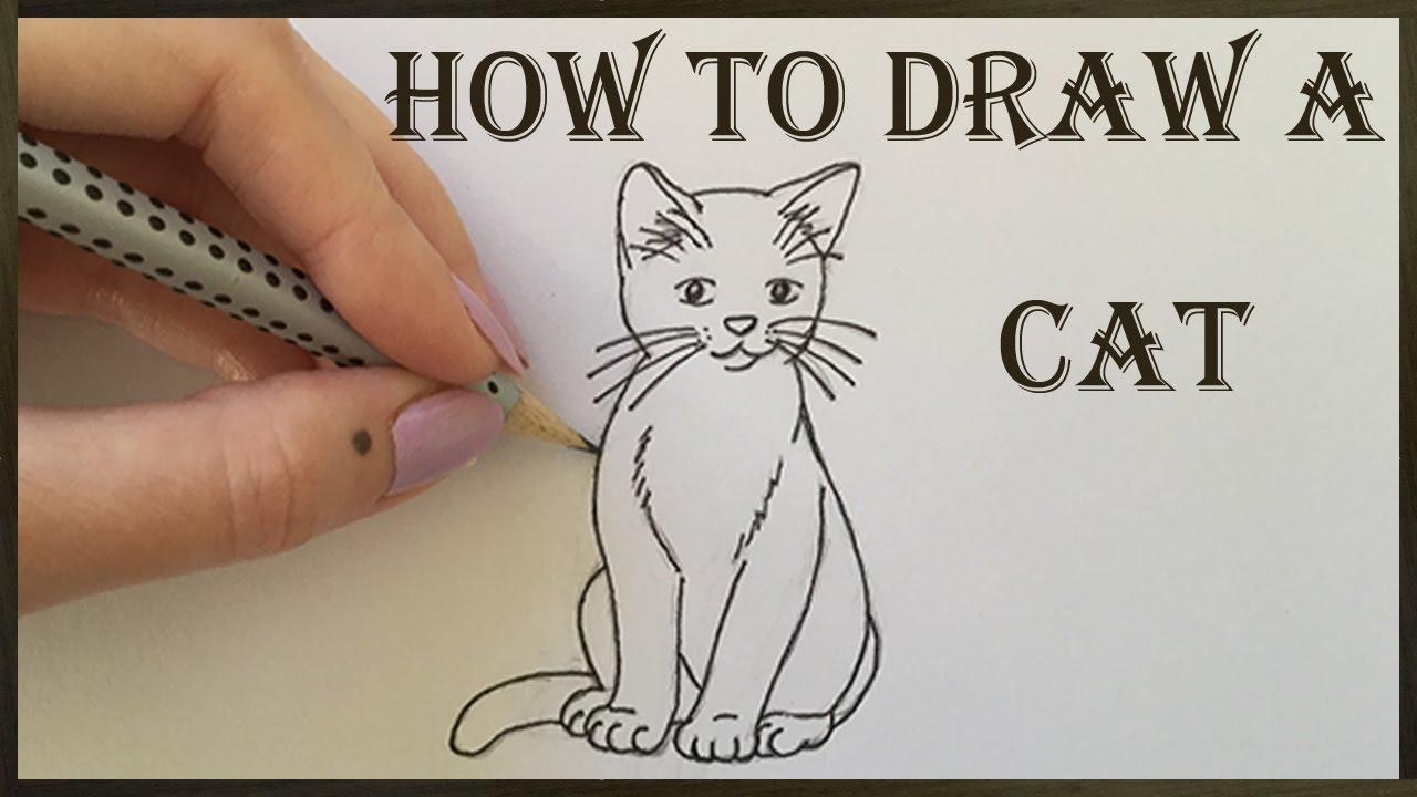 1280x720 Cat Drawing