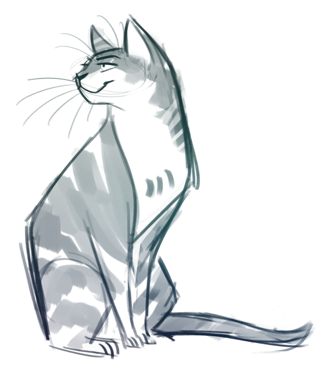 1280x1467 Daily Cat Drawings 109 Tabby Sketch