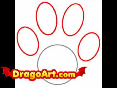 480x360 How To Draw A Paw Print, Step By Step