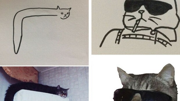 620x350 26 Cat Drawing Examples That Are Just So On Point