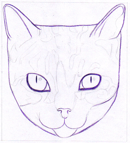 450x495 How To Draw A Cat Learn How To Create A Unique Colorful Cat
