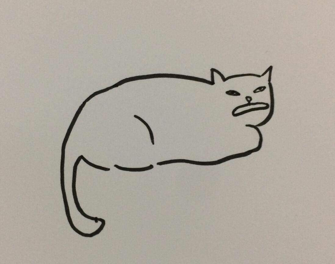 1098x864 My Teacher Says I Can'T Draw Cats