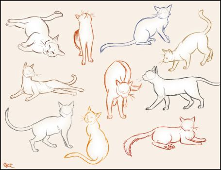 cat poses drawing at getdrawings  free download