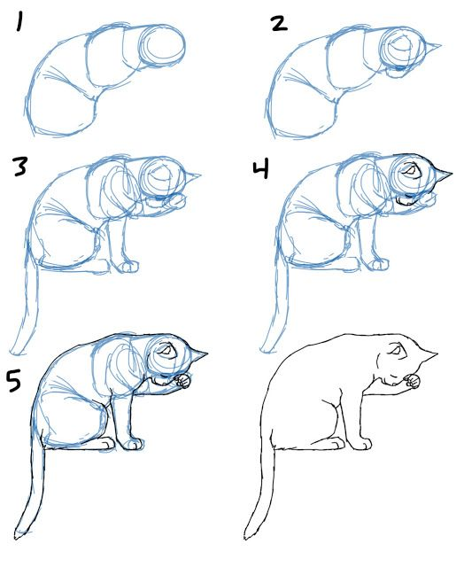 524x640 How To Draw A Cat Sitting. Please Also Visit Www