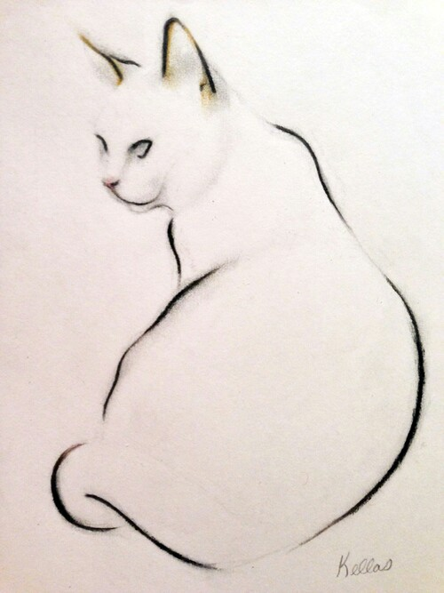 500x667 Pin By Judith Hill On Drawing Creative Art And Cat