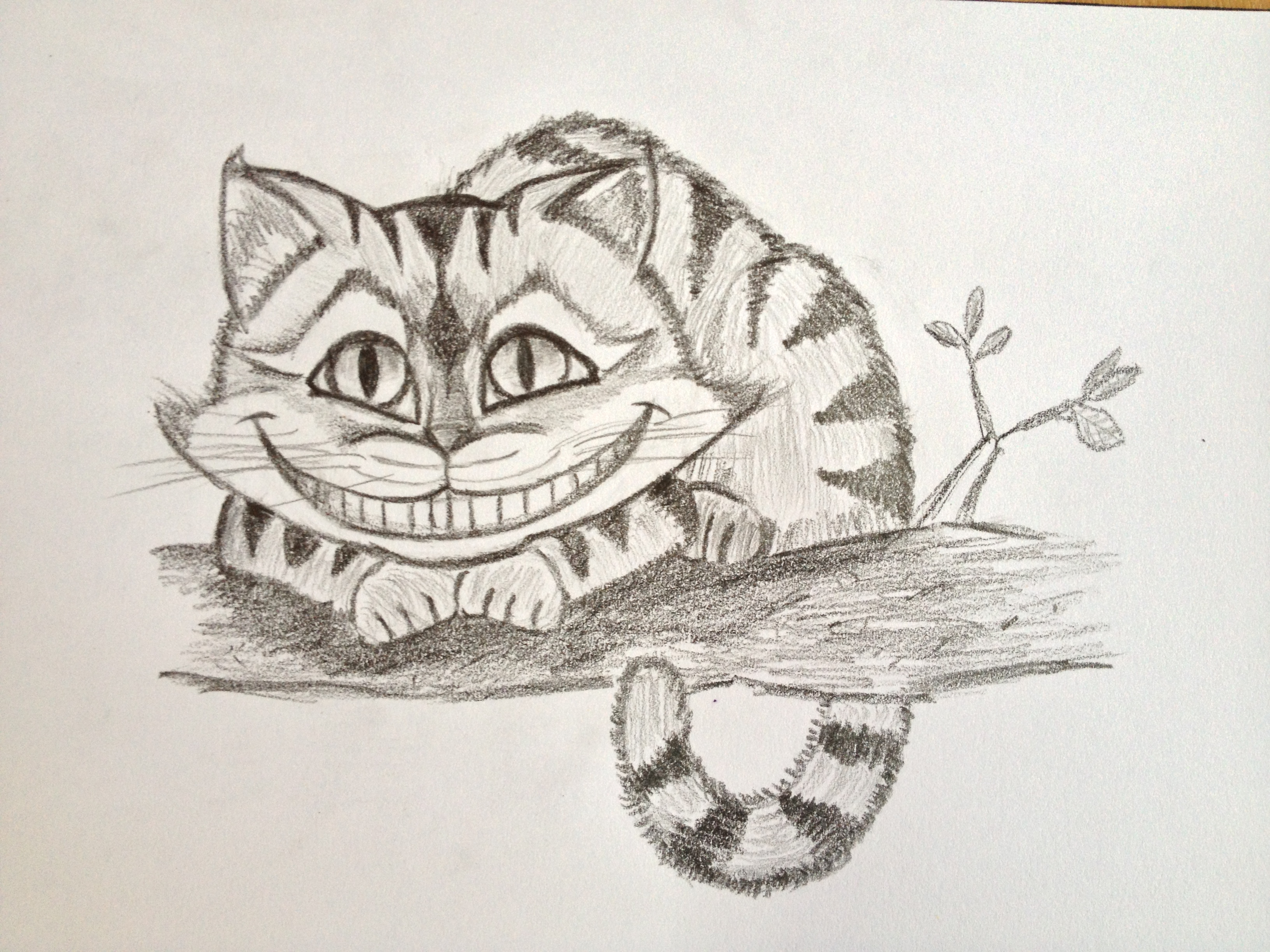 3264x2448 Cheshire Cat Drawings Drawn Cheshire Cat Realistic