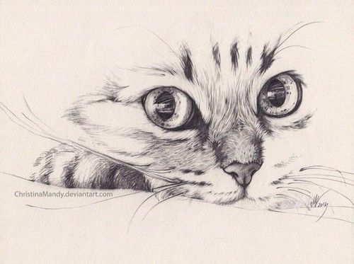 500x373 gallery images of sketches