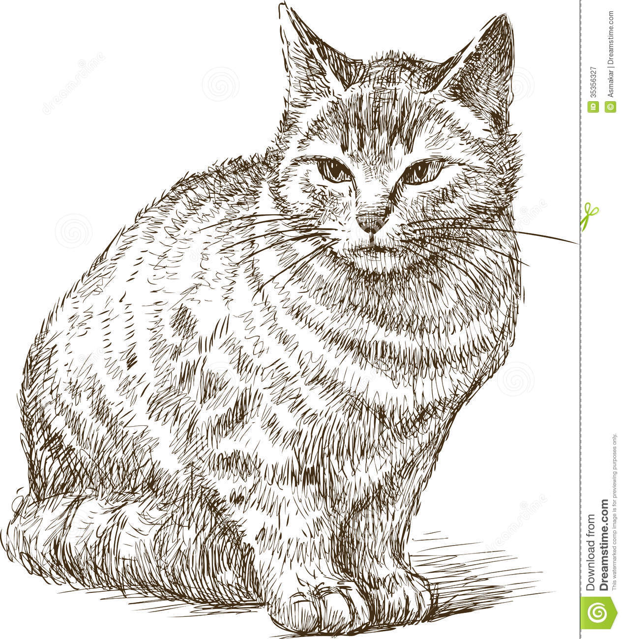 Cat Sketch Drawing at GetDrawings.com | Free for personal use Cat ...