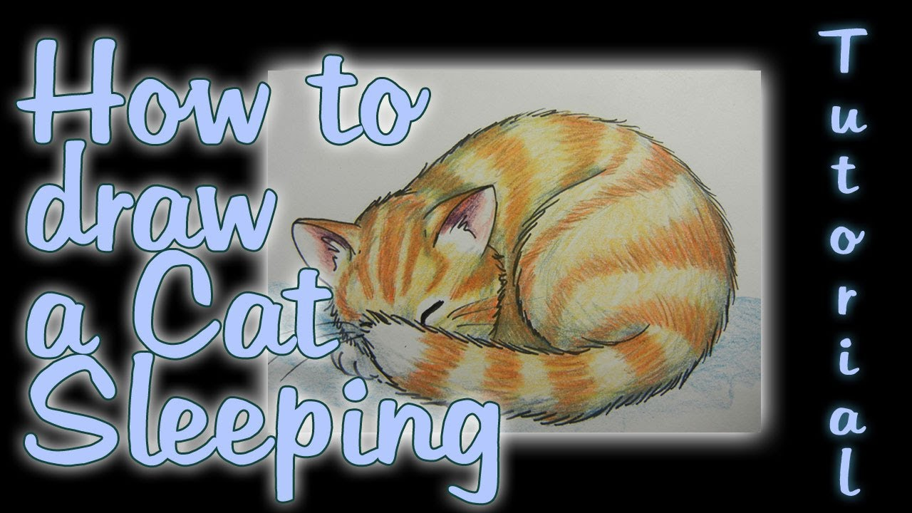 Coloring Pages Of Sleeping Animals : Cat sleeping drawing at getdrawings.com free for personal use cat