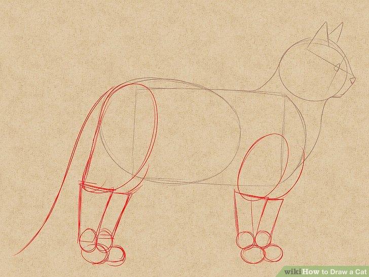 728x546 The 4 Best Ways To Draw A Cat