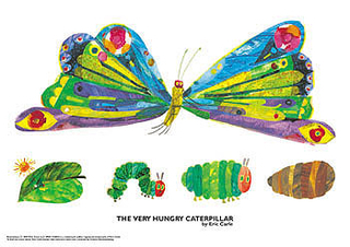 320x226 Very Hungry Caterpillar Butterfly, Life Stages