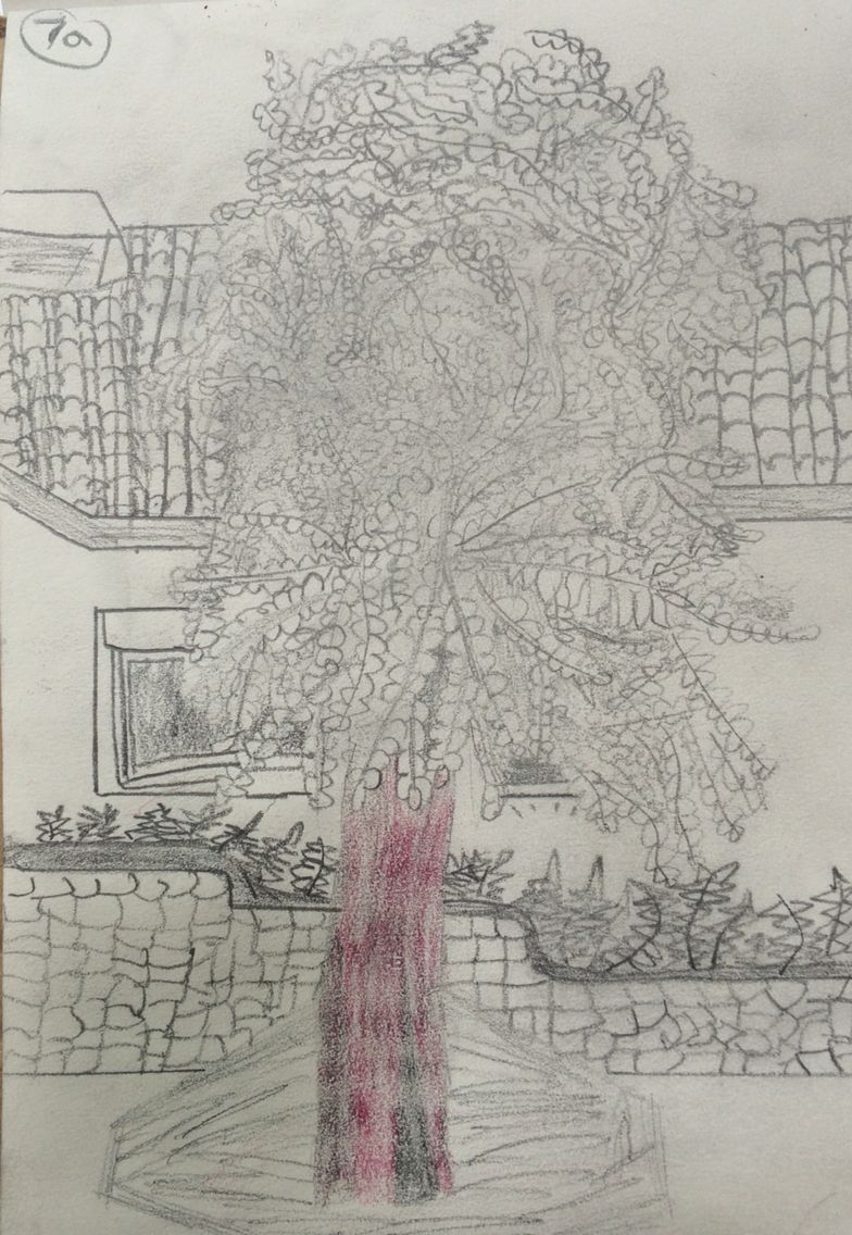 784x1136 Matthew, Observational Drawing Of School Precinct