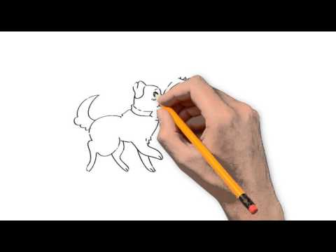 480x360 Cats And Dogs Animals Pencil To Draw Step By Step