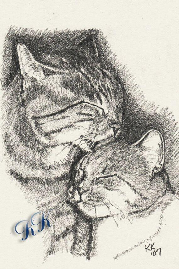 570x855 138 Best 16. Cats Amp Art