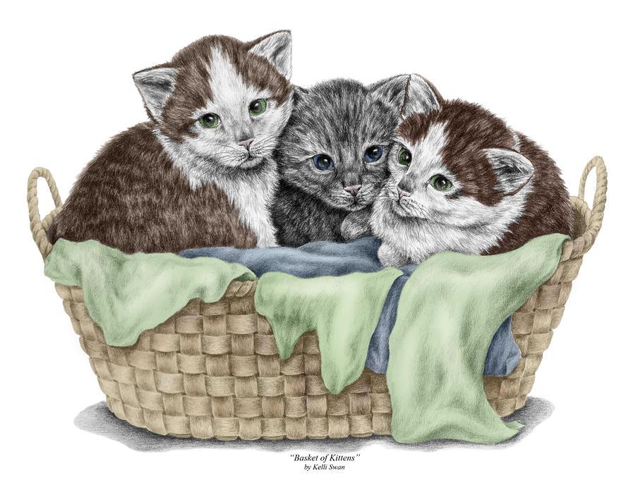 900x688 Basket Of Kittens