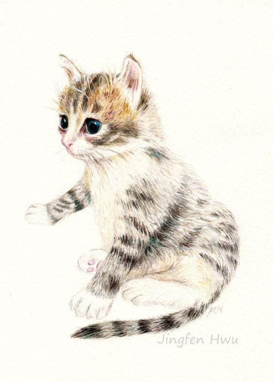 564x788 Cat Art Print Of Original Drawing, A Cute Kitten, Cat Lover's Gift