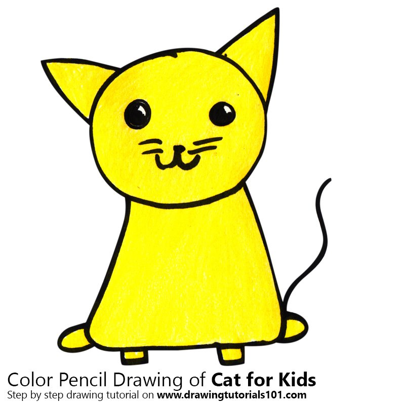 800x800 Learn How To Draw A Cat For Kids (Animals For Kids) Step By Step