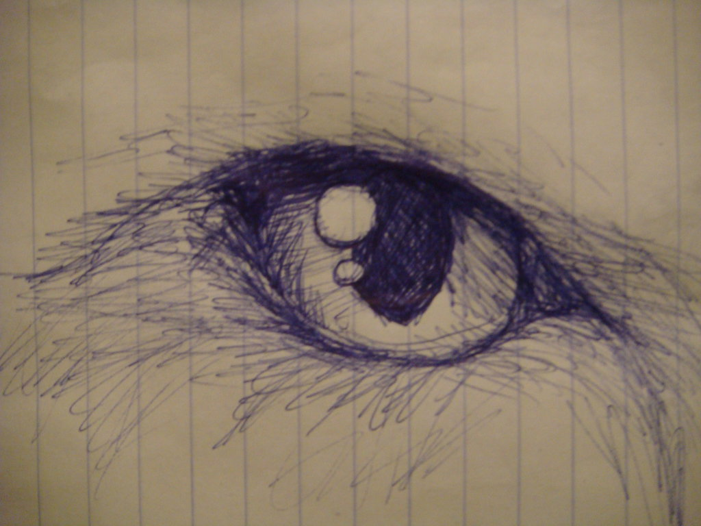 1024x768 Cat Eye Sketch By Polarbears101