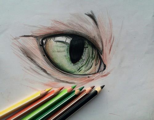 500x389 Cat Eye Draw Uploaded By Shining Star On We Heart It