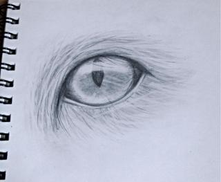 320x263 Does This Look Realistic It's Supposed To Be A Cat Eye