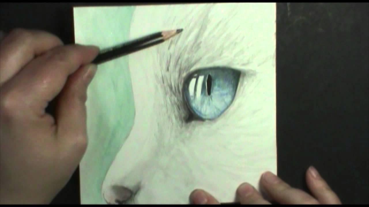 1280x720 Speed Painting Cat's Eye