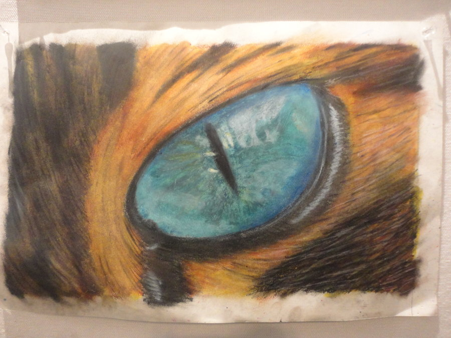 900x675 Cat Eye Done With Oil Pastel By Poke557