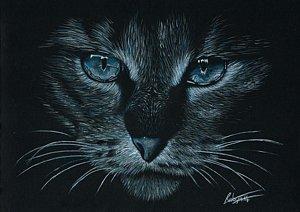 300x212 Black Cat Green Eyes Drawings Fine Art America