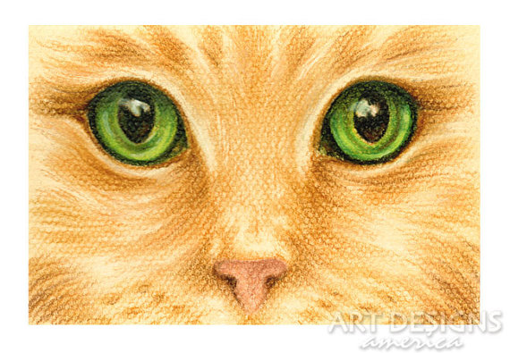 570x395 Original Cat Pastel Drawing Cat Eyes Closeup 6 X 4 Inches