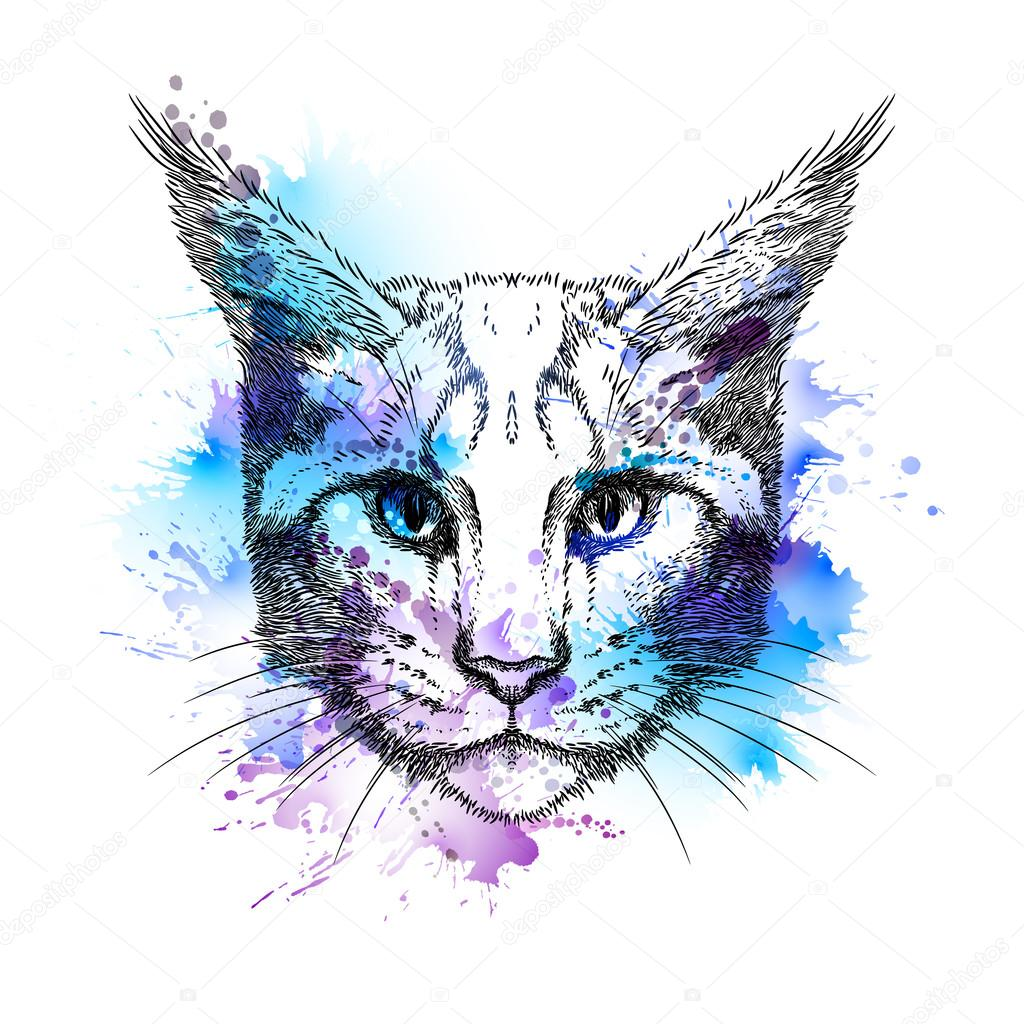 1024x1024 Hand Drawn Cat Face With Blots Stock Vector Antart