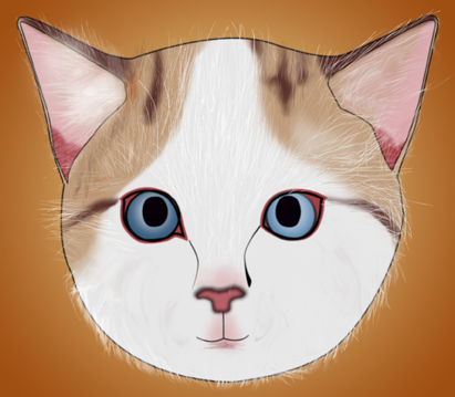 411x359 How To Draw A Realistic Cat's Face 11 Steps (With Pictures)