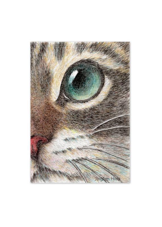 570x797 Cat Art Print Cat Face Drawing Art Print The Innocent Cat