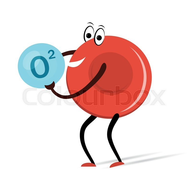 800x800 Vector Illustration. Drawing. Red Blood Cell With Oxygen Cartoon
