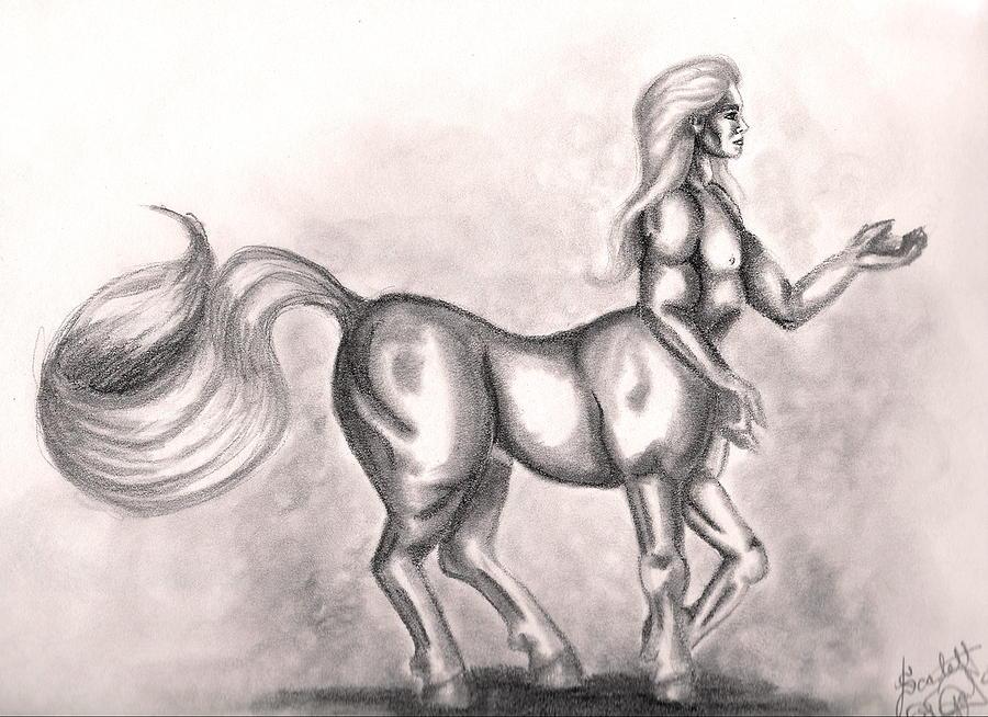 900x654 Centaur Drawing By Scarlett Royal