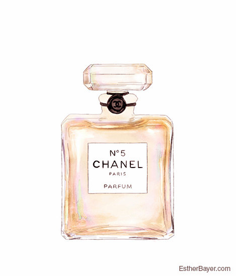 Chanel Perfume Bottle Drawing At Getdrawingscom Free For Personal