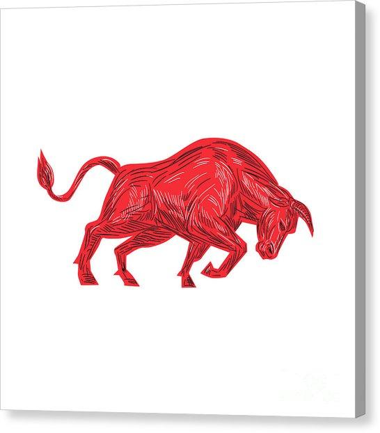 546x622 Charging Bull Art