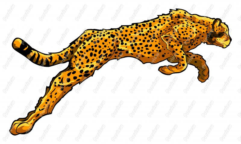 how to get cheetah form