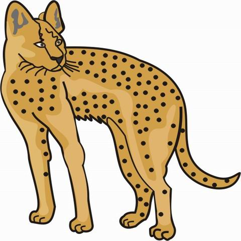 Cheetah Drawing Kids at GetDrawingscom Free for personal use