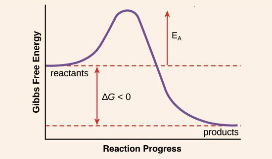 chemical energy drawing at getdrawings com