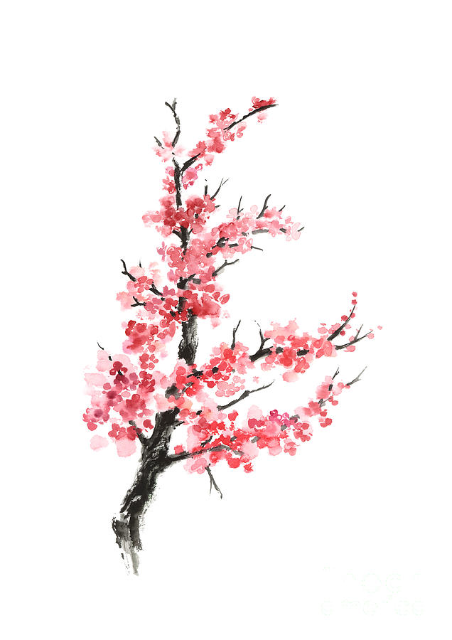 Cherry Blossom Branch Drawing At Getdrawings Com Free