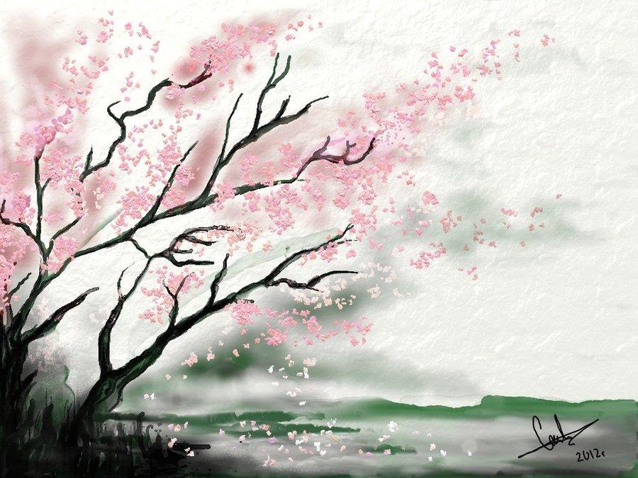 900x675 How To Draw Cherry Blossom Tree