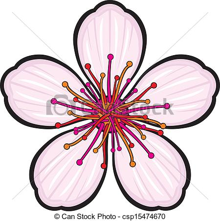 450x453 Cherry Blossom Flower Vectors Illustration