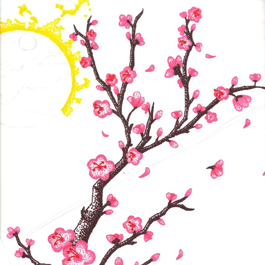 894x894 Drawing Sakura Flower Cherry Blossom Flower Branch Drawing Hand