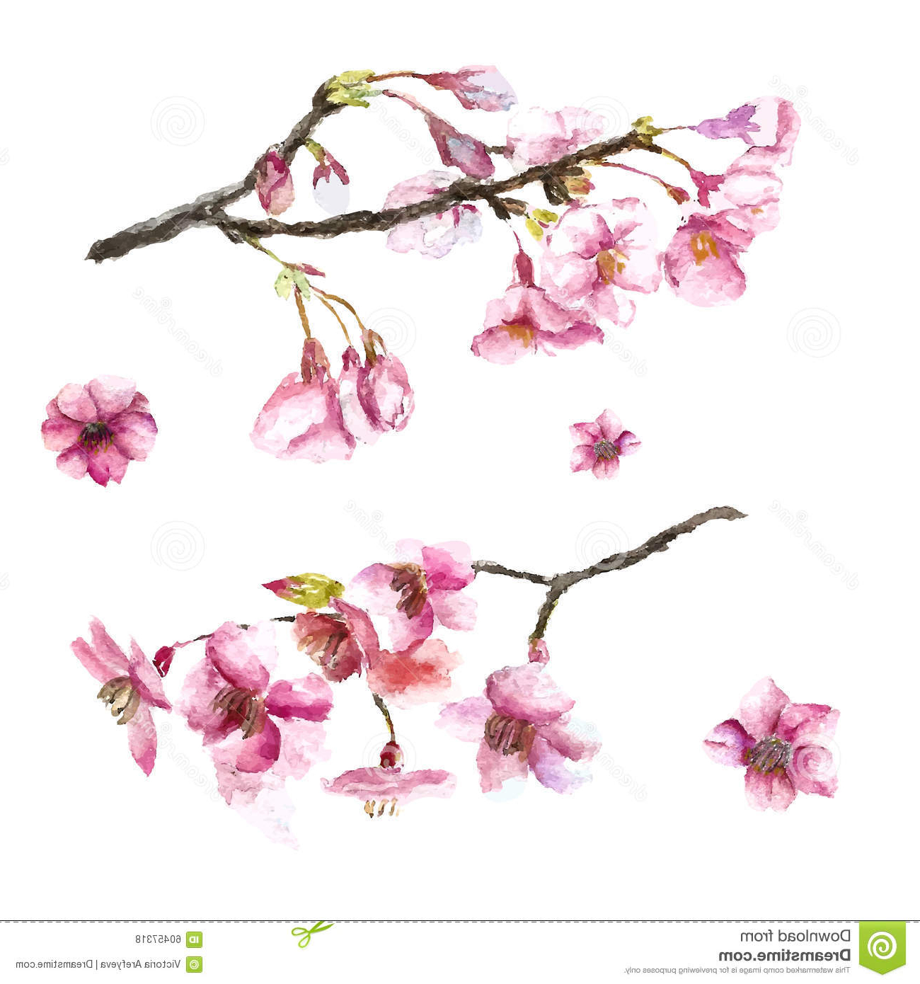 Cherry blossom flowers drawing at getdrawings free for 1300x1390 cherry blossom flower branch drawing hand drawn cherry blossoms mightylinksfo