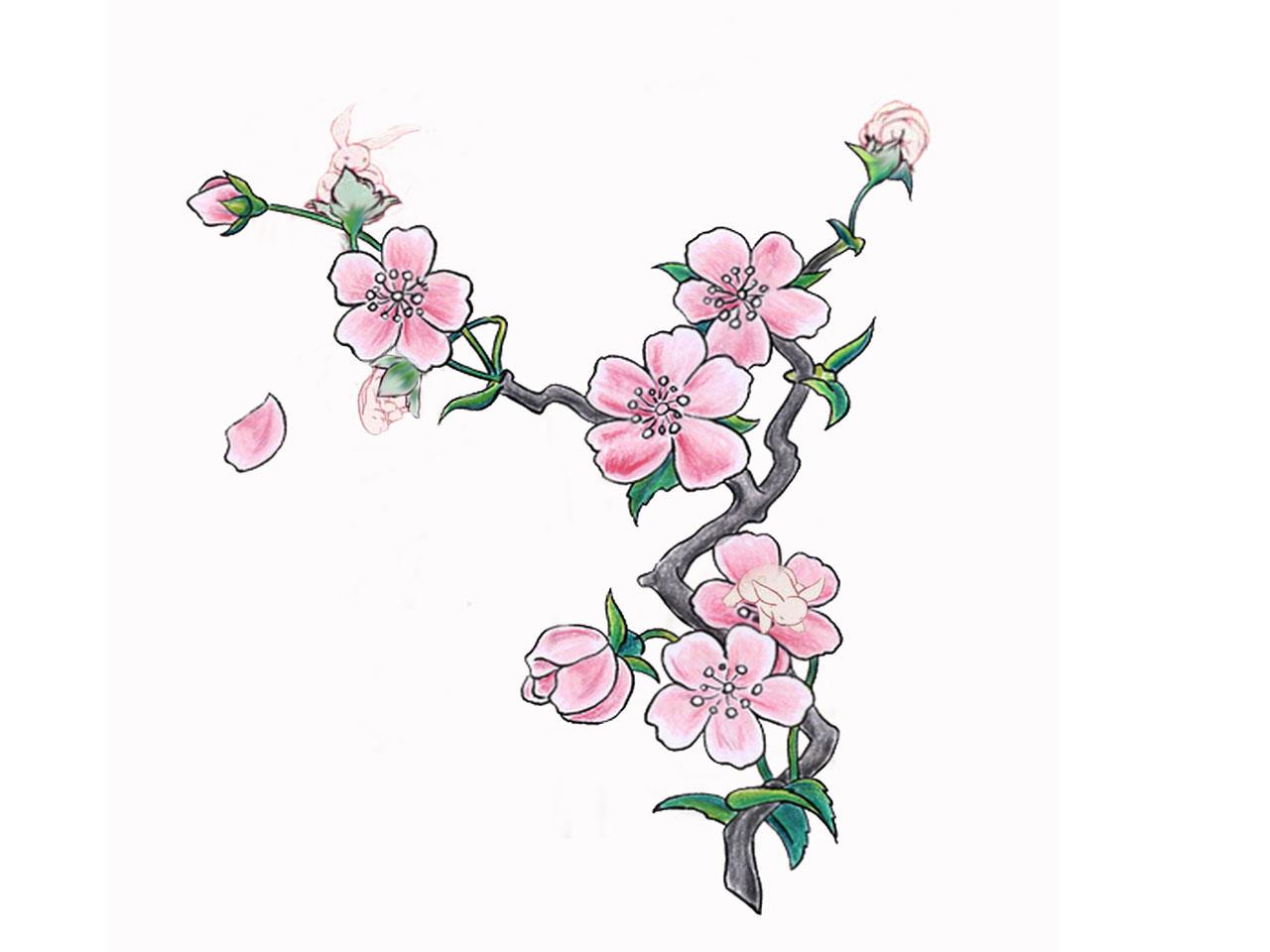 1280x960 Pink Cherry Blossom Tattoo Wallpaper Tattoos Pinterest